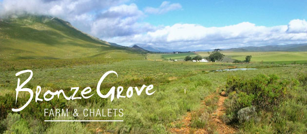 BRONZE GROVE FARM AND CHALETS, barrydale